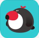 犀鸟公考官网app