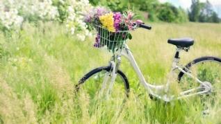 清新浪漫自行车唯壁纸